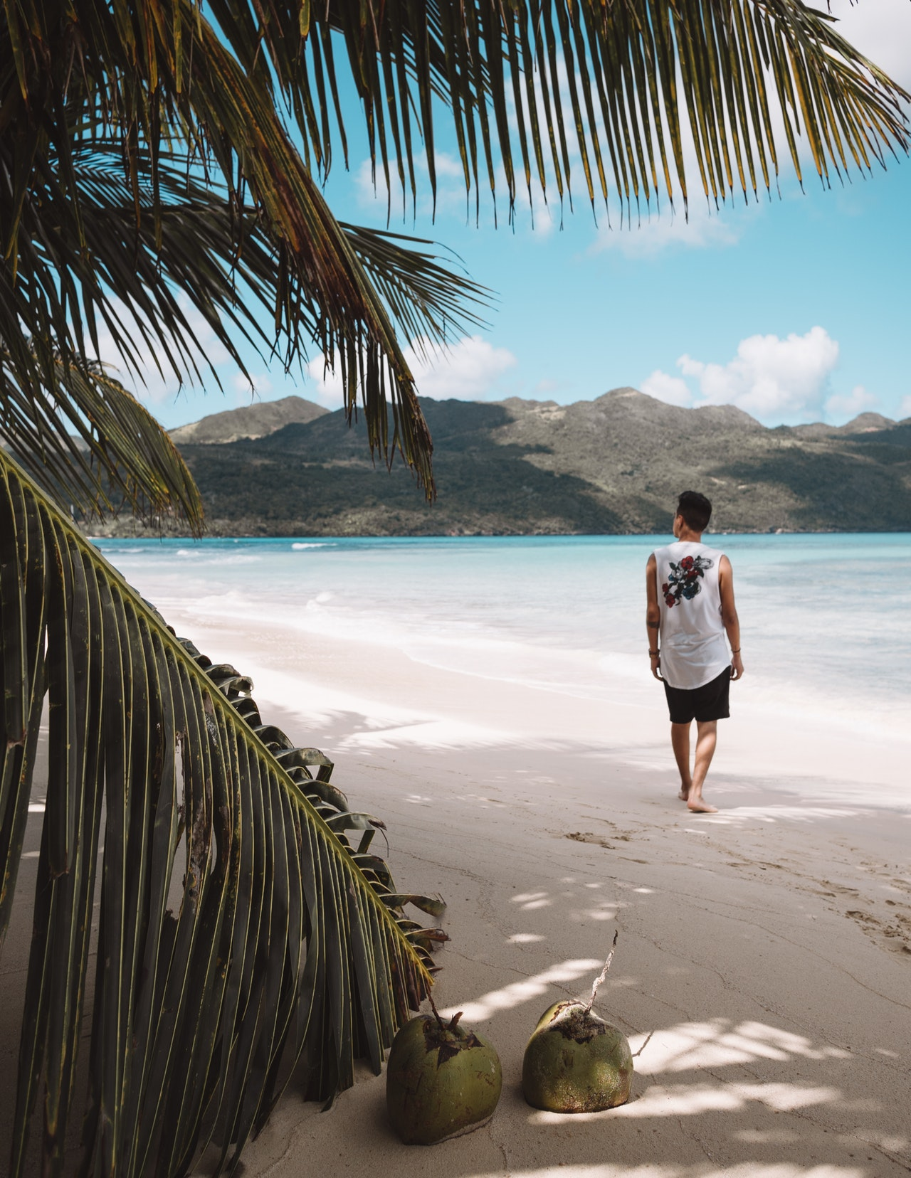 4-exotic-beach-before