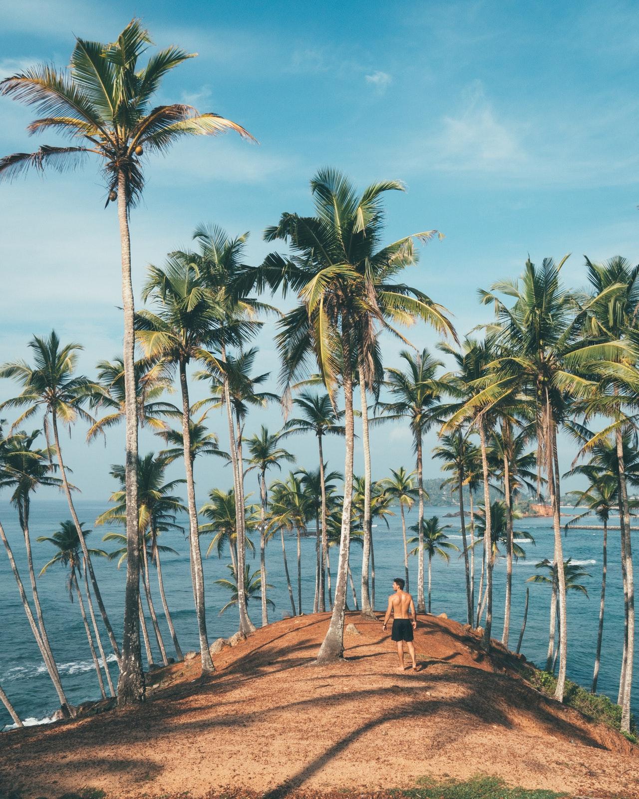 5-exotic-beach-before